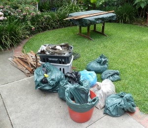 extra-rubbish-we-cleaned-out