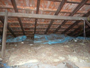 filthy roof cavity