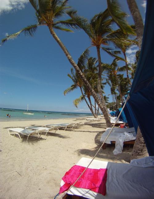 rash vest drying in the sun in hawaii